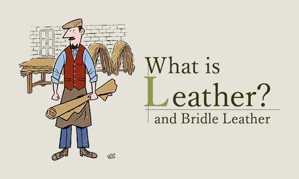 What is Leather? and Bridle Leather -ブライドルレザーとは?-
